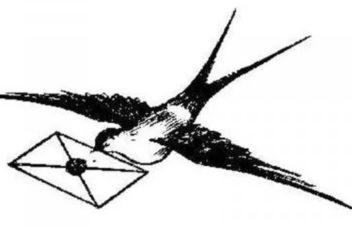 Блокадная ласточка